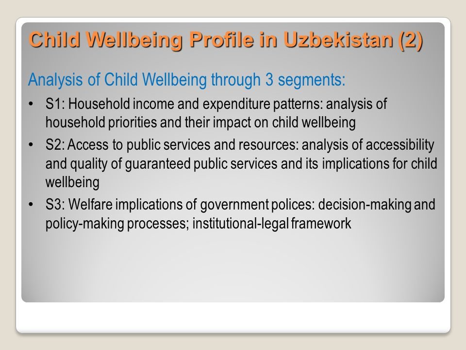 Measurement and indicators Availability and accessibility of statistical information, in particular, the key indicators of child wellbeing (e.g., the level and concentration of child wellbeing / poverty) Data incompatibilities due differing definitions, data collection and processing methods (e.g., a lack of commonly accepted definition of child wellbeing / poverty) Frequency, timeliness and disaggregation level of available data on child wellbeing / poverty Child Wellbeing Profile in Uzbekistan (3)