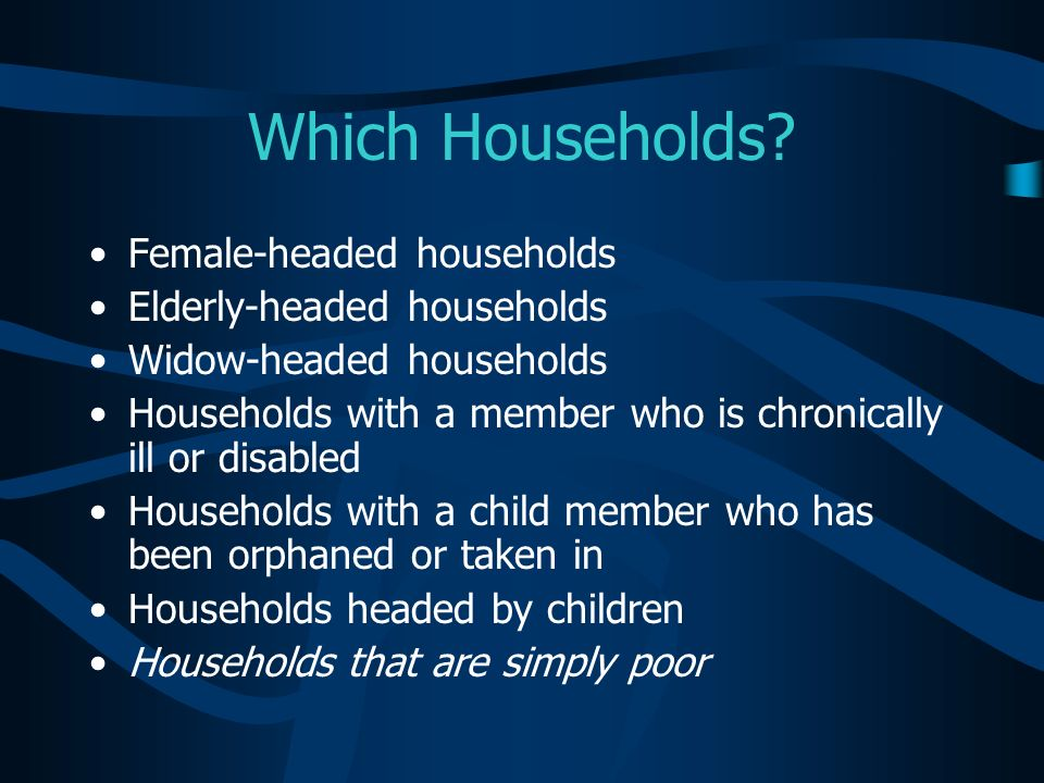 Which Households? Female-headed households Elderly-headed households Widow-headed households Households with a member who is chronically ill or disabl