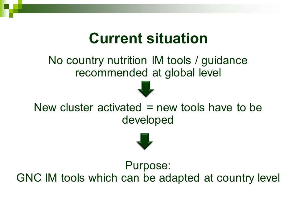 Current situation No country nutrition IM tools / guidance recommended at global level New cluster activated = new tools have to be developed Purpose: GNC IM tools which can be adapted at country level