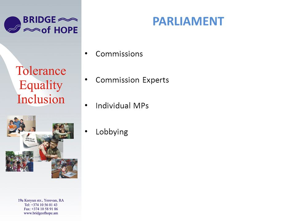 PARLIAMENT Commissions Commission Experts Individual MPs Lobbying