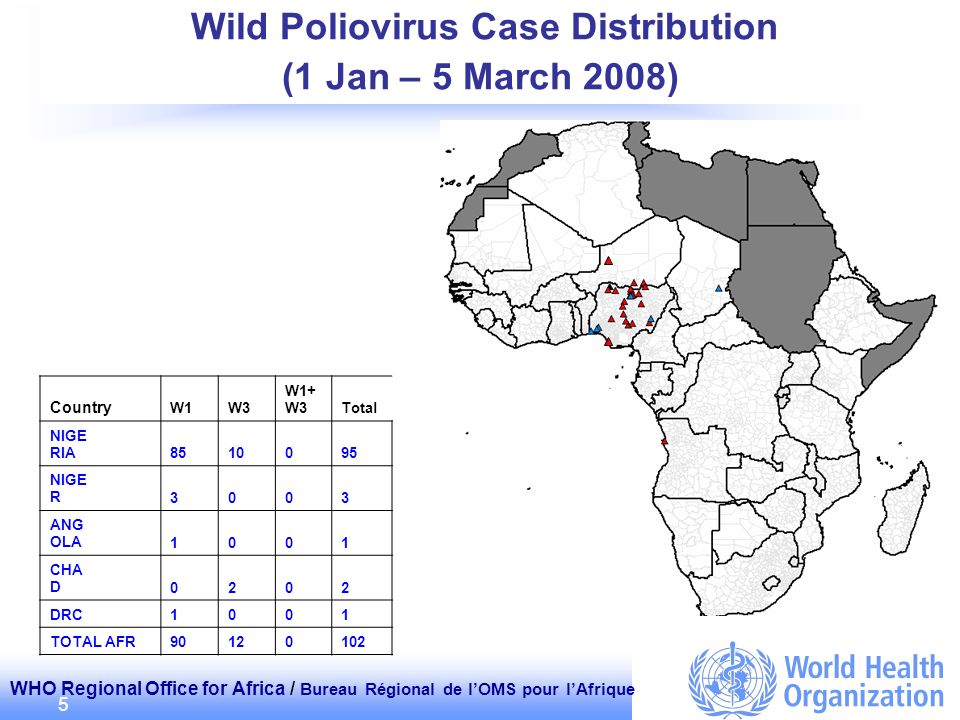 WHO Regional Office for Africa / Bureau Régional de lOMS pour lAfrique 5 Wild Poliovirus Case Distribution (1 Jan – 5 March 2008) Country W1W3 W1+ W3Total NIGE RIA 8510095 NIGE R 3003 ANG OLA 1001 CHA D 0202 DRC 1001 TOTAL AFR90120102