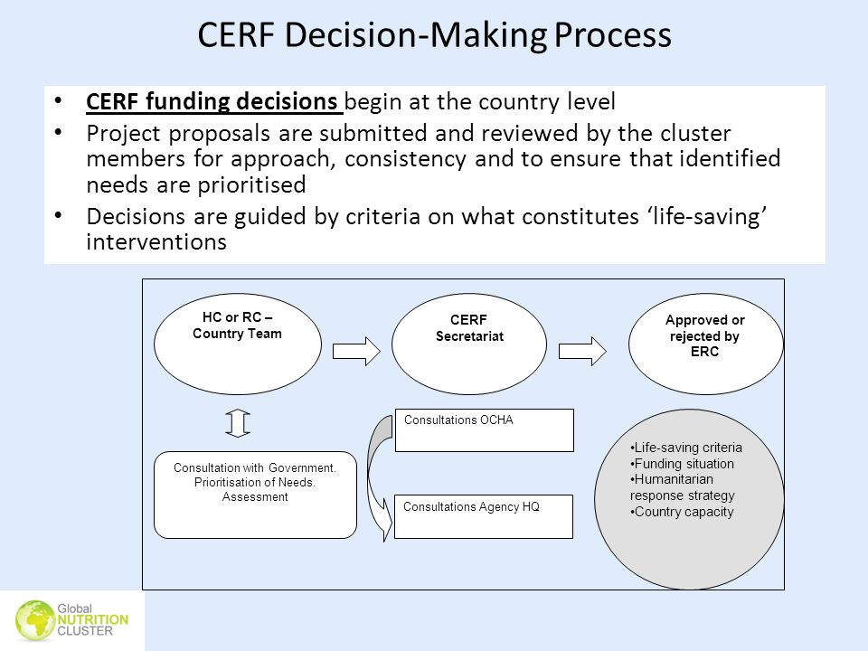CERF Decision-Making Process CERF funding decisions begin at the country level Project proposals are submitted and reviewed by the cluster members for