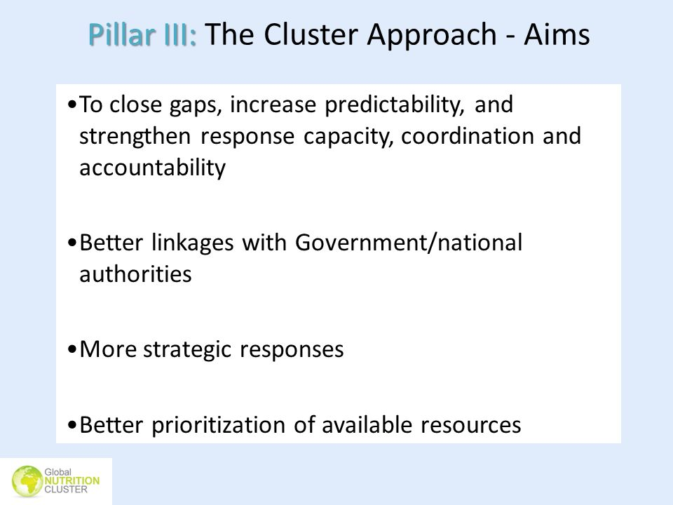 Pillar III: Pillar III: The Cluster Approach - Aims To close gaps, increase predictability, and strengthen response capacity, coordination and account