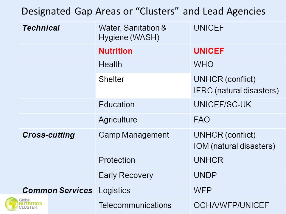 Designated Gap Areas or Clusters and Lead Agencies TechnicalWater, Sanitation & Hygiene (WASH) UNICEF NutritionUNICEF HealthWHO ShelterUNHCR (conflict