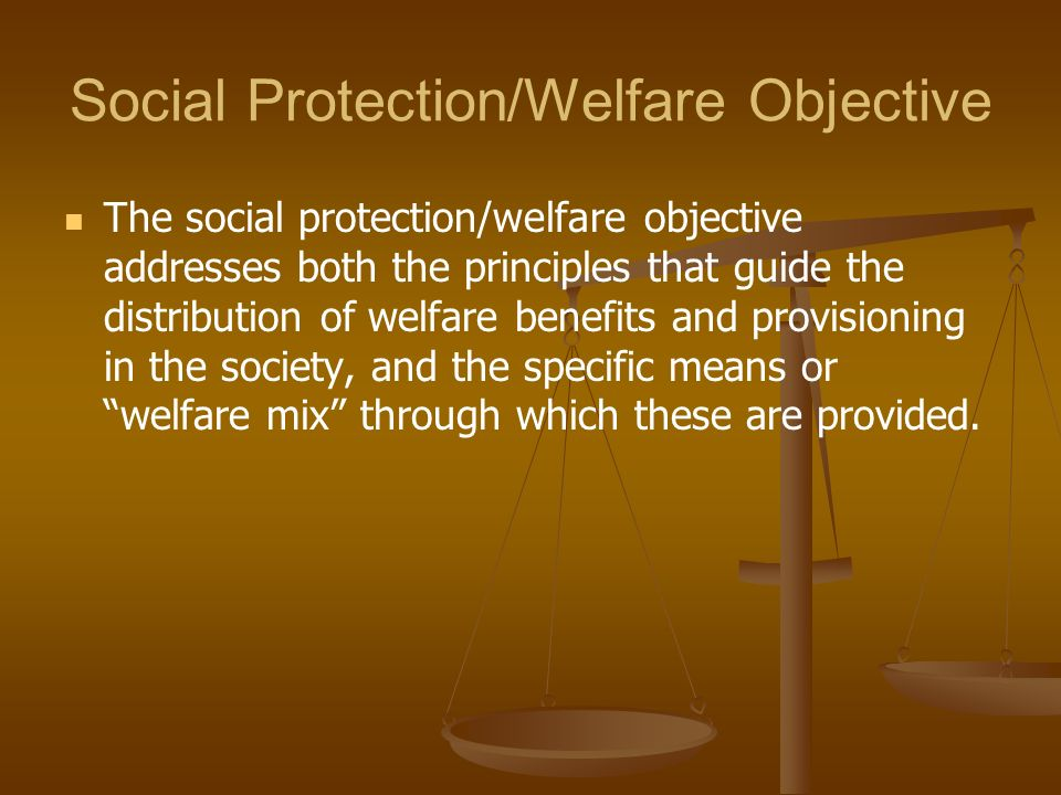 Social Protection/Welfare Objective The social protection/welfare objective addresses both the principles that guide the distribution of welfare benef