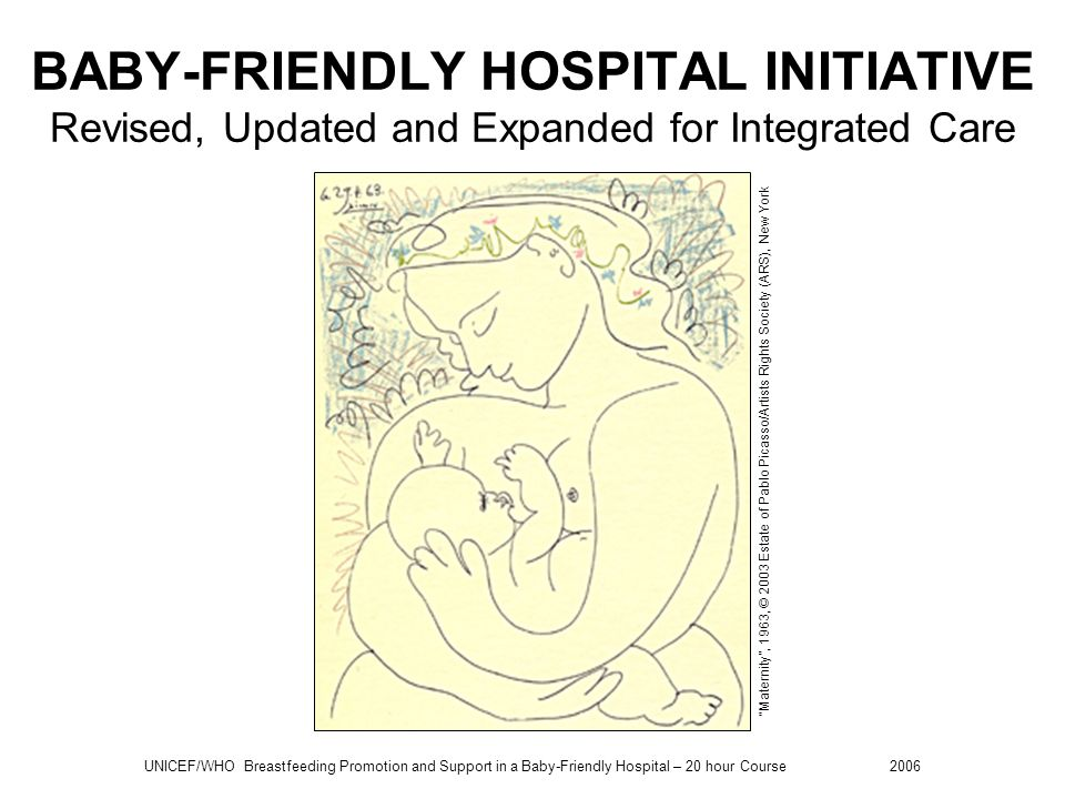 UNICEF/WHO Breastfeeding Promotion and Support in a Baby-Friendly Hospital – 20 hour Course 2006 Global Strategy for Infant and Young Child Feeding The aim of the Global Strategy is to improve – through optimal feeding – the nutritional status, growth and development, health, and thus the survival of infants and young children.