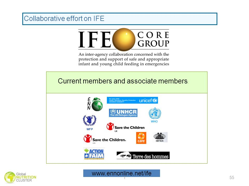 WHO WFP Current members and associate members : Collaborative effort on IFE   155