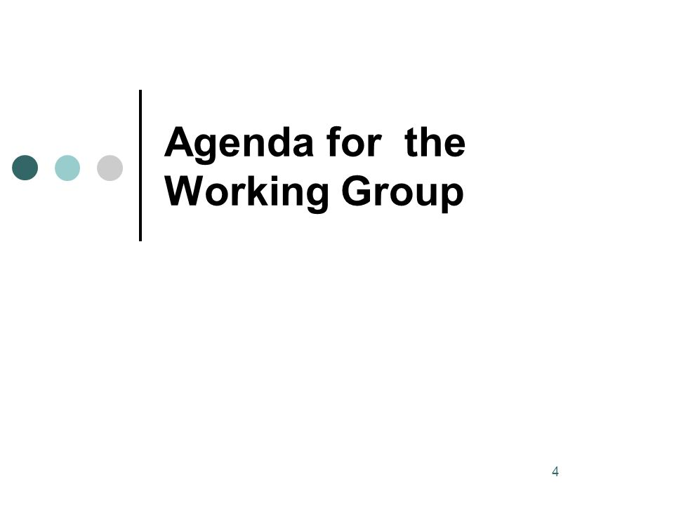4 Agenda for the Working Group