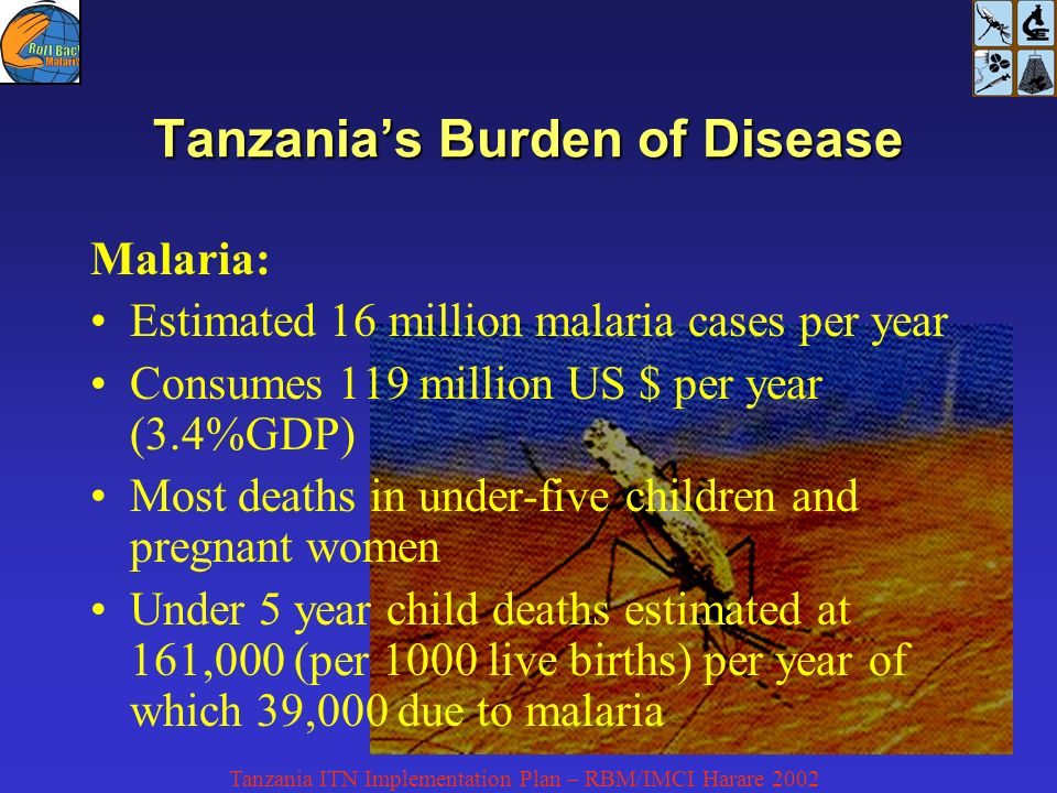 Tanzania ITN Implementation Plan – RBM/IMCI Harare 2002 Malaria: Estimated 16 million malaria cases per year Consumes 119 million US $ per year (3.4%GDP) Most deaths in under-five children and pregnant women Under 5 year child deaths estimated at 161,000 (per 1000 live births) per year of which 39,000 due to malaria Tanzanias Burden of Disease