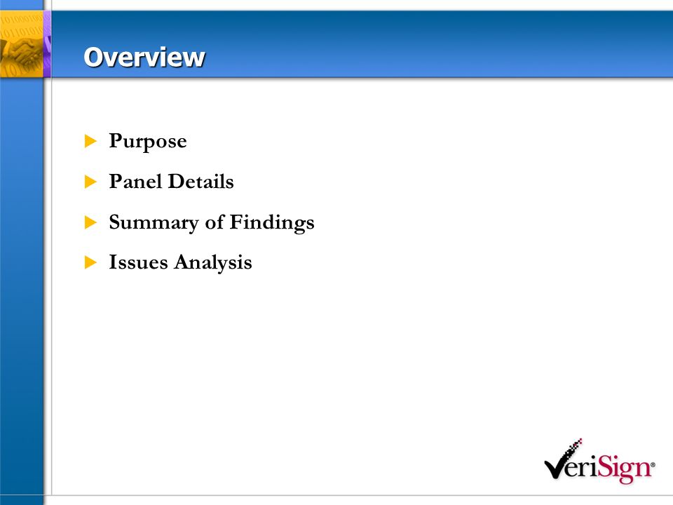 Overview Purpose Panel Details Summary of Findings Issues Analysis