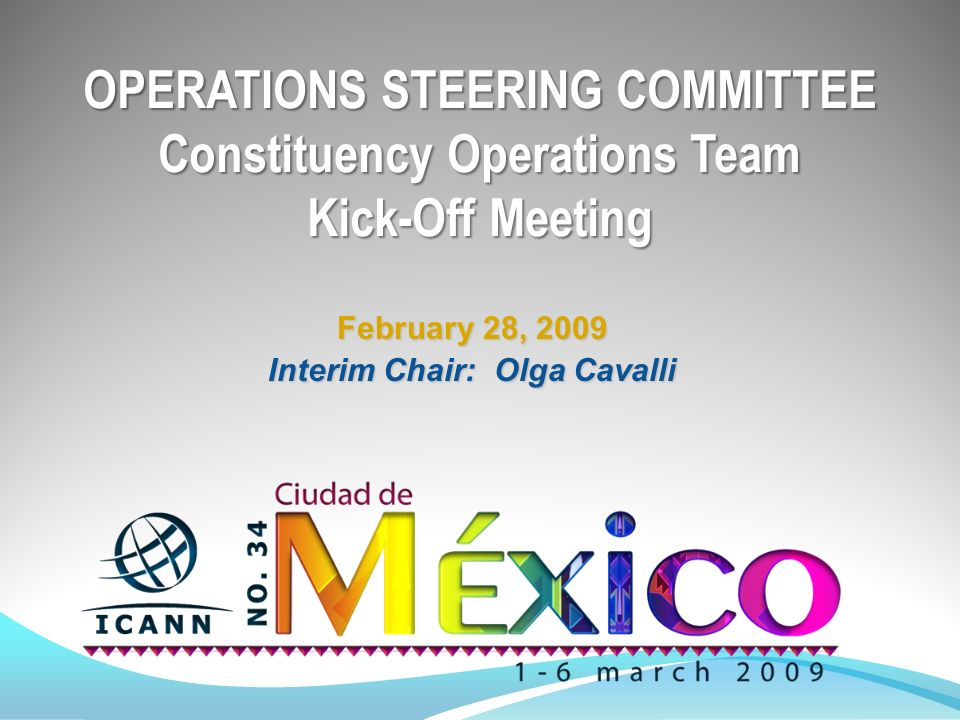 OPERATIONS STEERING COMMITTEE Constituency Operations Team Kick-Off Meeting February 28, 2009 Interim Chair: Olga Cavalli
