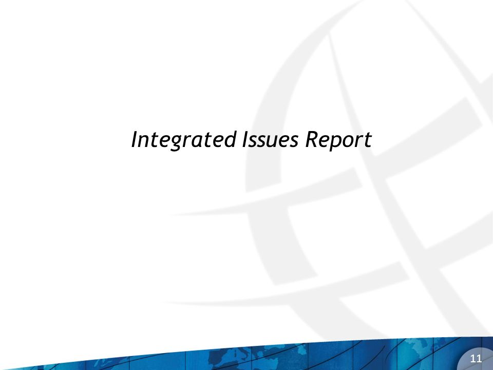 11 Integrated Issues Report
