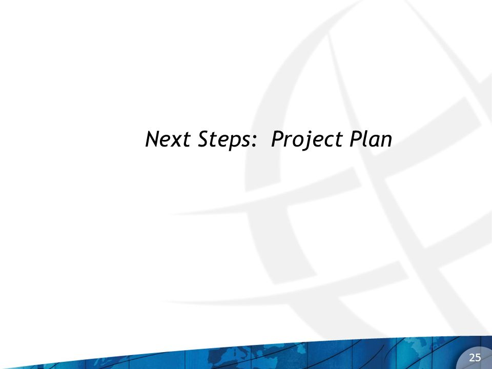 25 Next Steps: Project Plan