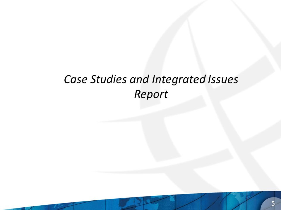 5 Case Studies and Integrated Issues Report