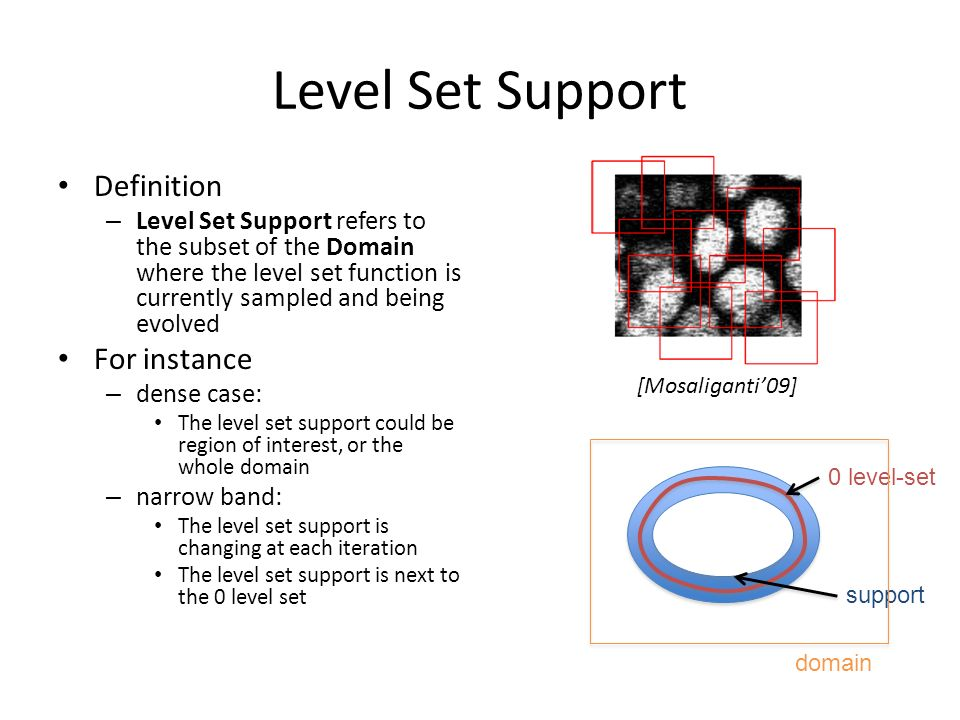 Level Set Support Definition – Level Set Support refers to the subset of the Domain where the level set function is currently sampled and being evolve