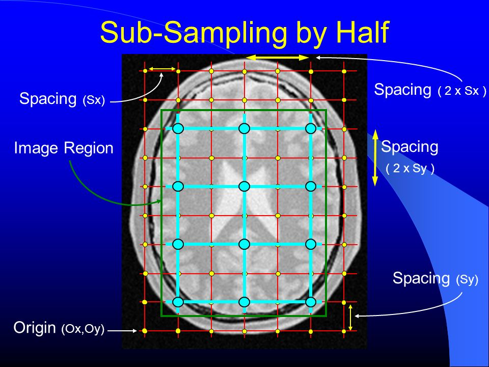 Sub-Sampling by Half Origin (Ox,Oy) Spacing (Sy) Spacing (Sx) Image Region Spacing ( 2 x Sy ) Spacing ( 2 x Sx )