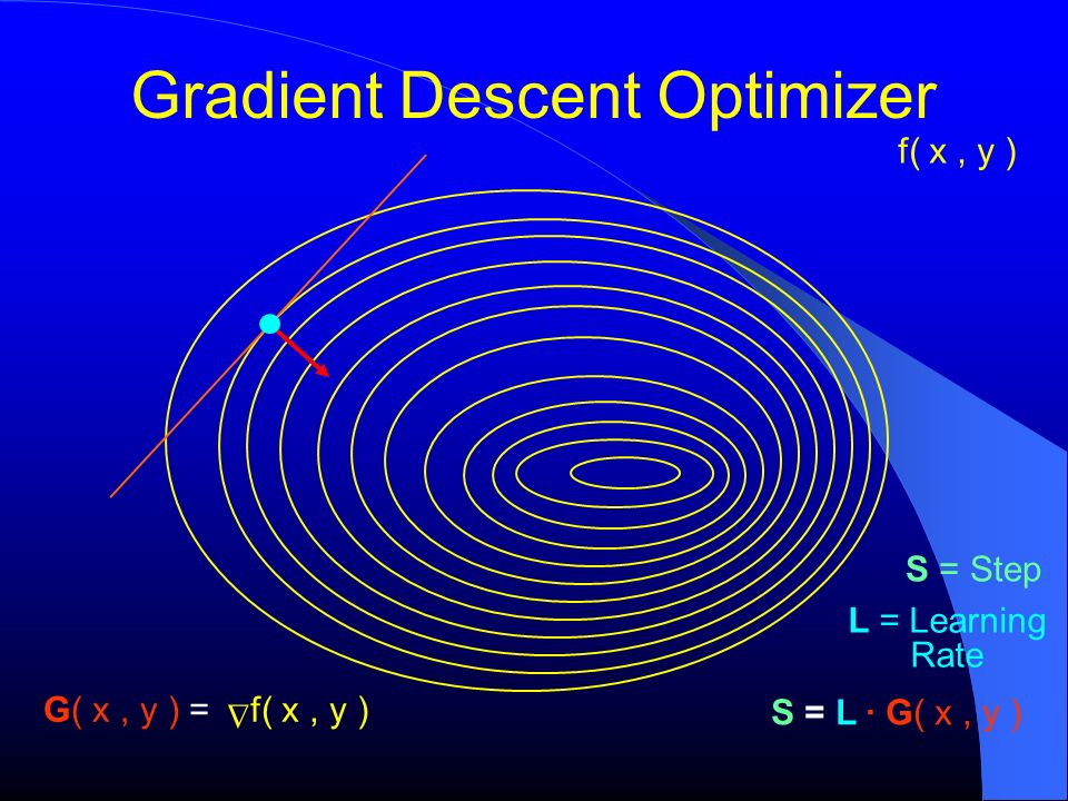 Gradient Descent Optimizer f( x, y ) S = L G( x, y ) f( x, y ) G( x, y ) = S = Step L = Learning Rate