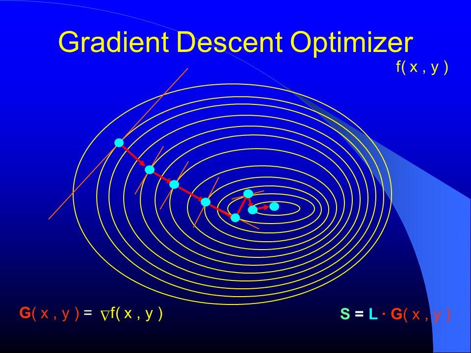 Gradient Descent Optimizer f( x, y ) S = L G( x, y ) f( x, y ) G( x, y ) =
