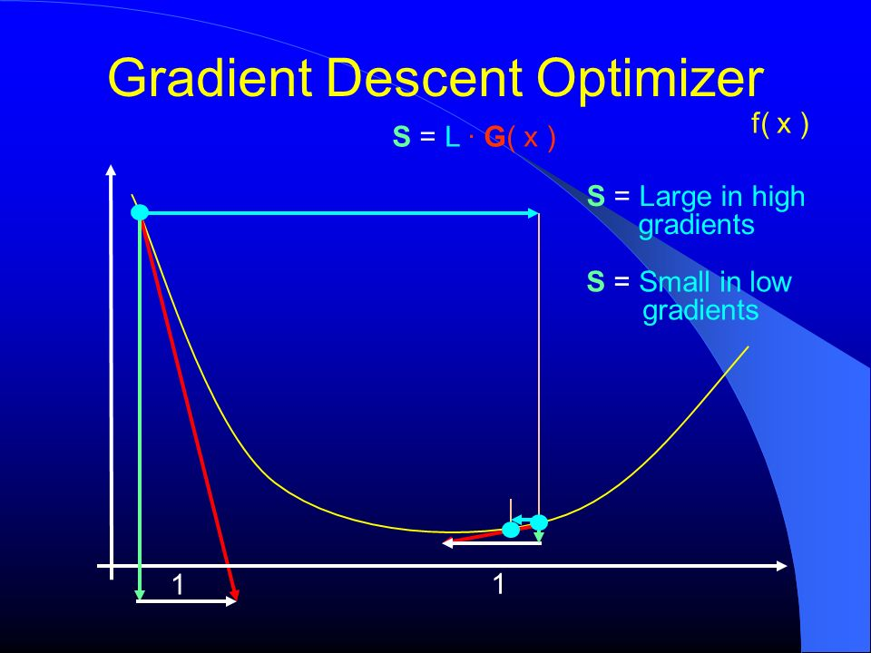 Gradient Descent Optimizer f( x ) 1 1 S = L G( x ) S = Large in high gradients S = Small in low gradients