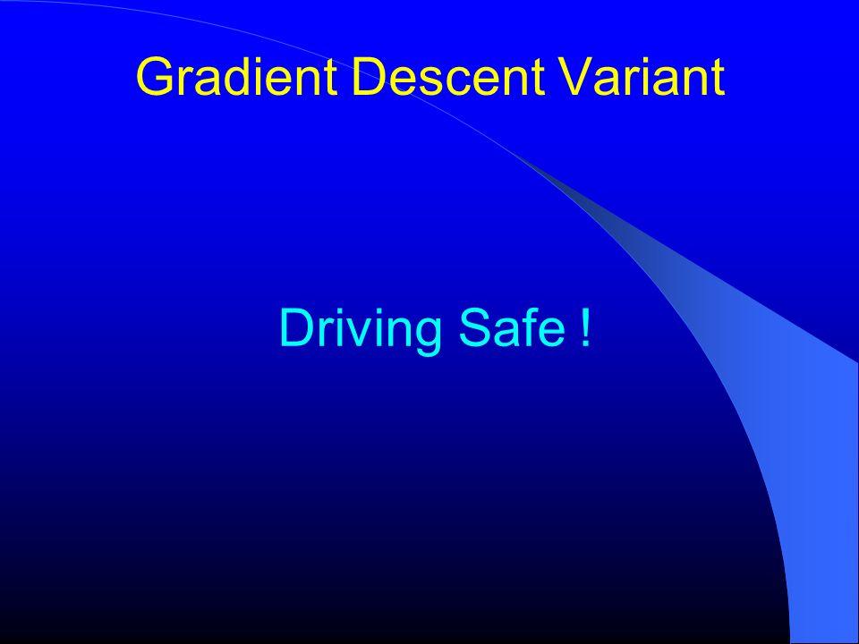 Gradient Descent Variant Driving Safe !