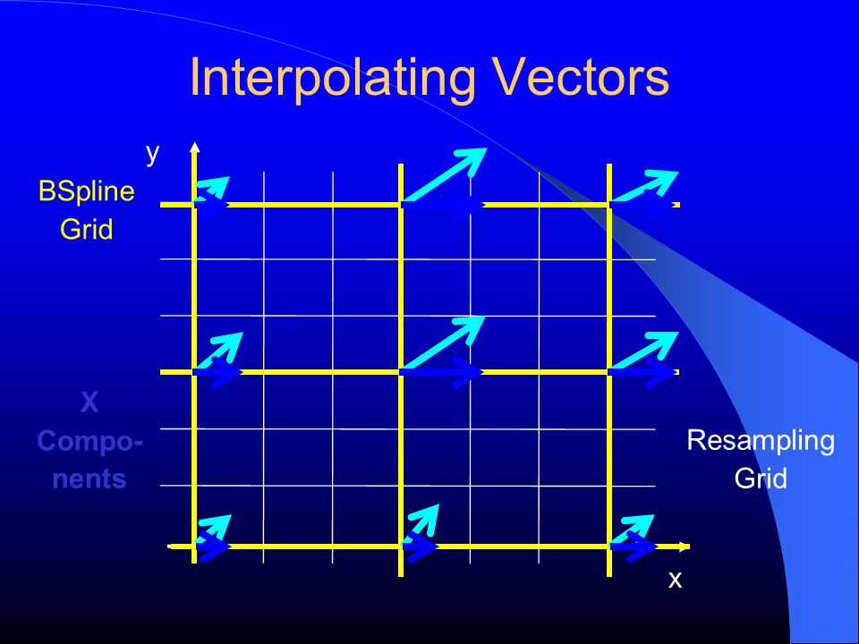 Interpolating Vectors y x BSpline Grid Resampling Grid X Compo- nents