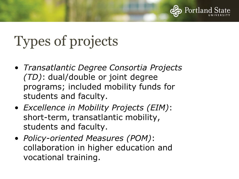 Types of projects Transatlantic Degree Consortia Projects (TD): dual/double or joint degree programs; included mobility funds for students and faculty.