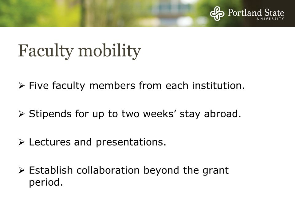 Faculty mobility Five faculty members from each institution.