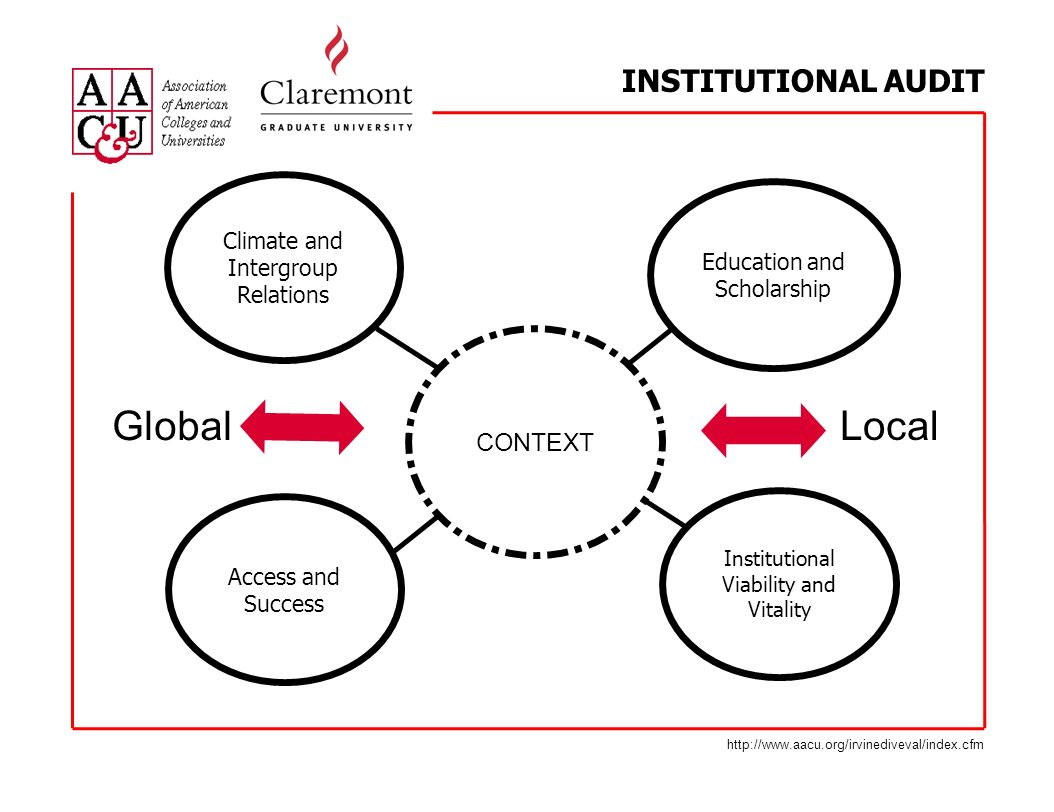 INSTITUTIONAL AUDIT Education and Scholarship Access and Success Institutional Viability and Vitality Climate and Intergroup Relations CONTEXT Global