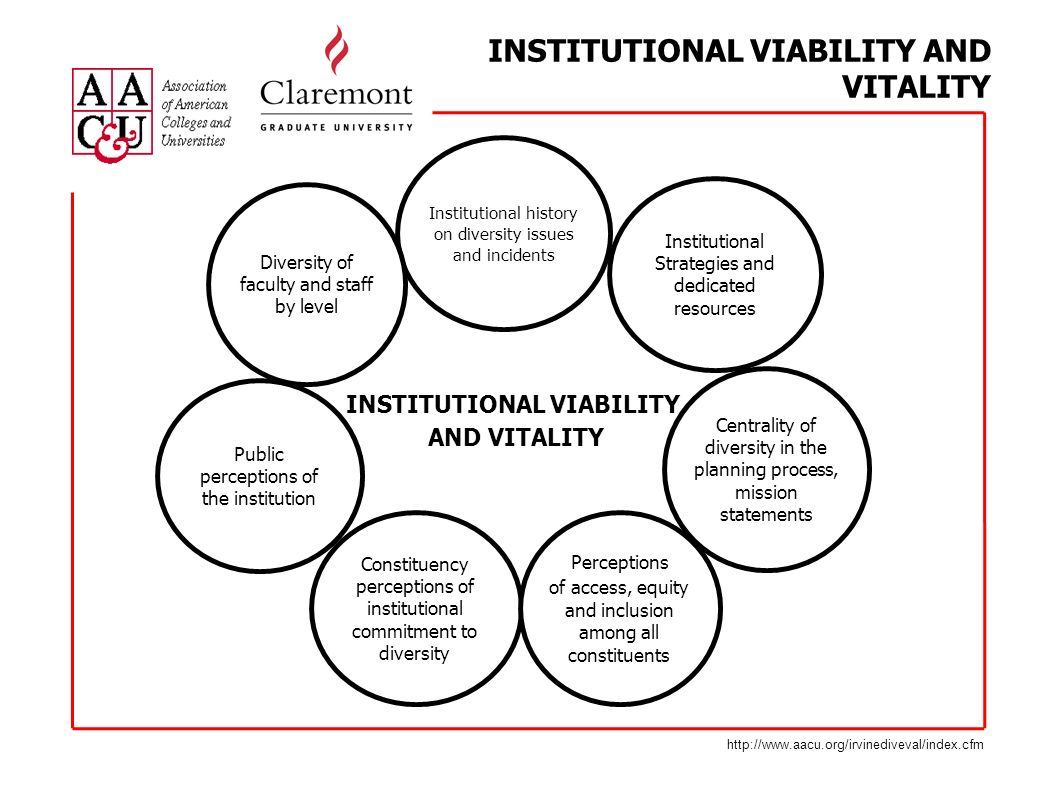 INSTITUTIONAL VIABILITY AND VITALITY http://www.aacu.org/irvinediveval/index.cfm Constituency perceptions of institutional commitment to diversity Perceptions of access, equity and inclusion among all constituents Public perceptions of the institution Centrality of diversity in the planning process, mission statements Institutional Strategies and dedicated resources Institutional history on diversity issues and incidents Diversity of faculty and staff by level INSTITUTIONAL VIABILITY AND VITALITY