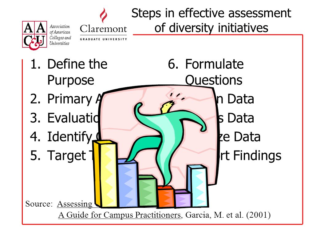 Steps in effective assessment of diversity initiatives 1.Define the Purpose 2.Primary Audience 3.Evaluation Team 4.Identify Context 5.Target Topic 6.Formulate Questions 7.Obtain Data 8.Assess Data 9.Analyze Data 10.