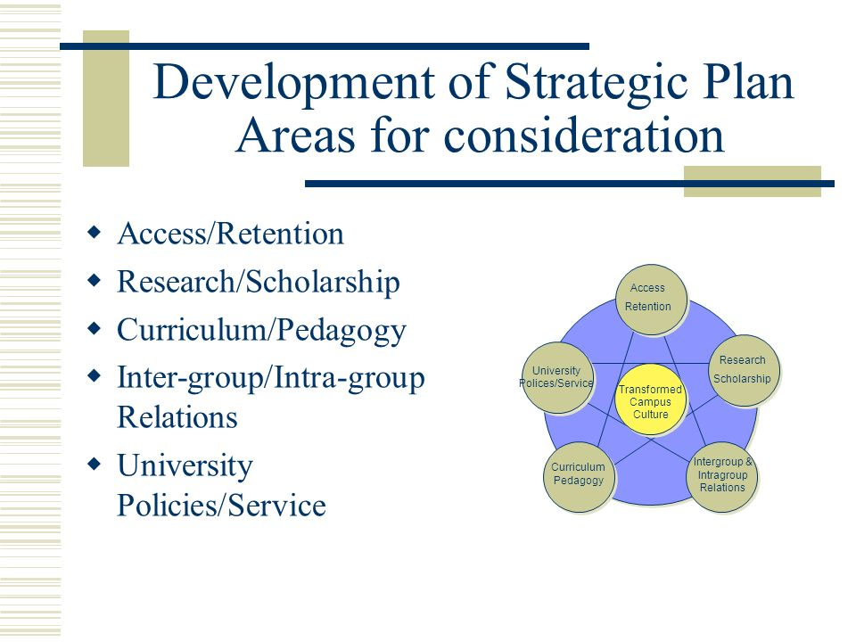 Development of Strategic Plan Areas for consideration Access/Retention Research/Scholarship Curriculum/Pedagogy Inter-group/Intra-group Relations Univ