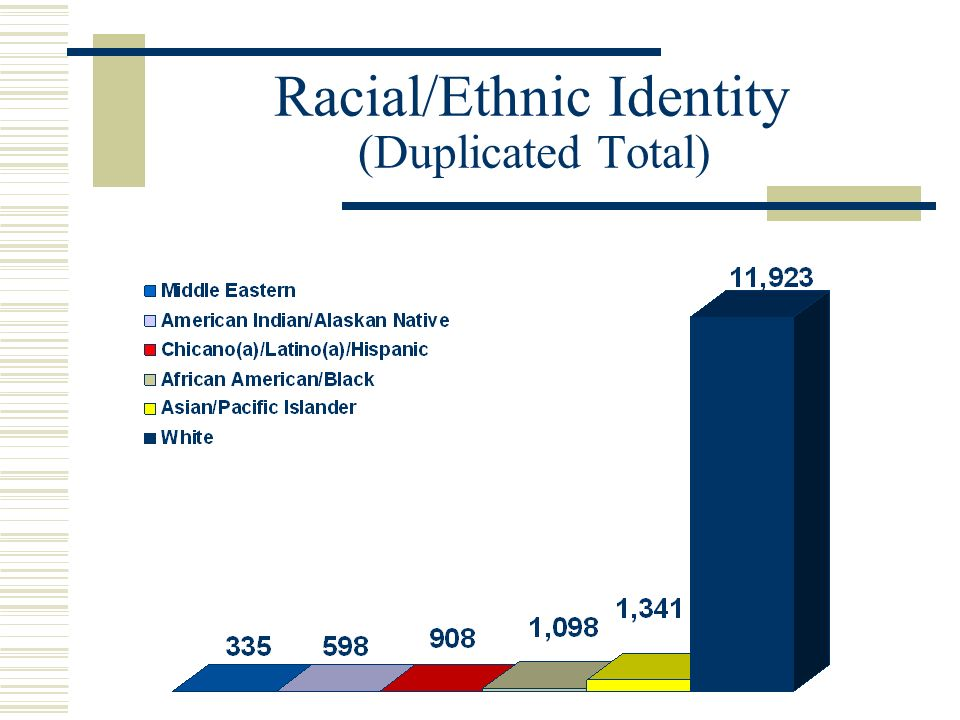 Racial/Ethnic Identity (Duplicated Total)