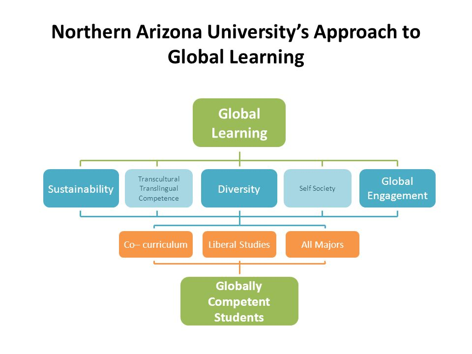 Northern Arizona Universitys Approach to Global Learning Global Learning Global Engagement SustainabilityDiversity Transcultural Translingual Competen