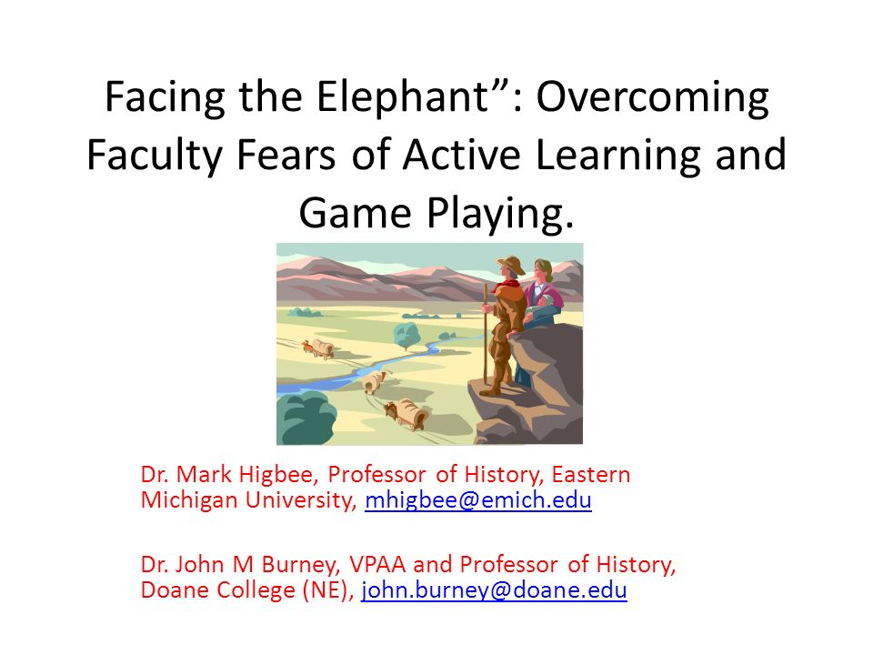 Facing the Elephant: Overcoming Faculty Fears of Active Learning and Game Playing.