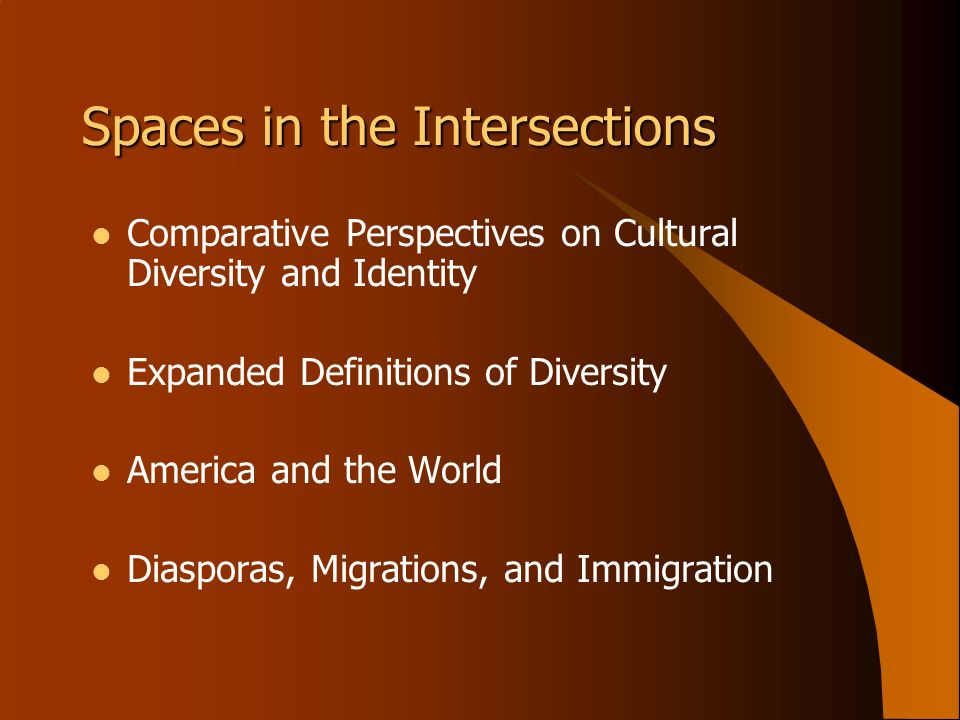 Spaces in the Intersections Comparative Perspectives on Cultural Diversity and Identity Expanded Definitions of Diversity America and the World Diaspo