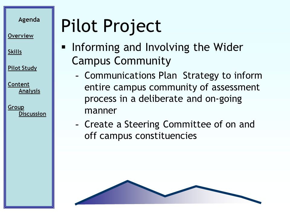 Agenda Overview Skills Pilot Study Content Analysis Group Discussion Pilot Project Informing and Involving the Wider Campus Community - Communications