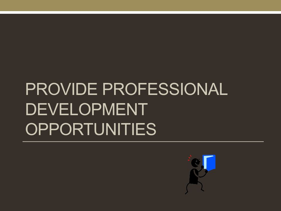 PROVIDE PROFESSIONAL DEVELOPMENT OPPORTUNITIES