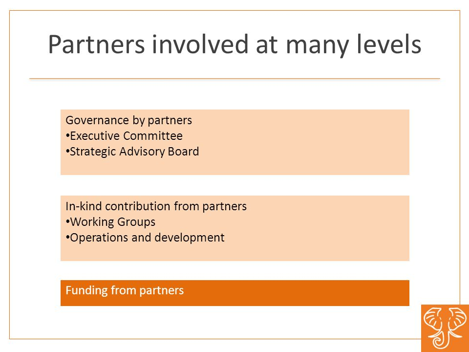 Partners involved at many levels Governance by partners Executive Committee Strategic Advisory Board In-kind contribution from partners Working Groups Operations and development Funding from partners