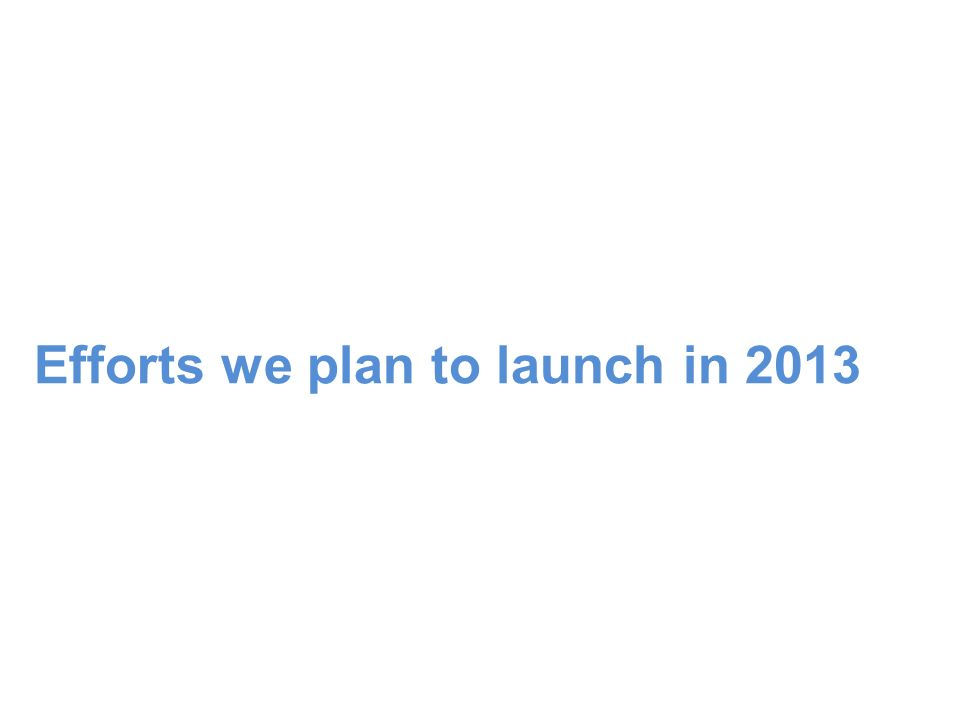 Efforts we plan to launch in 2013