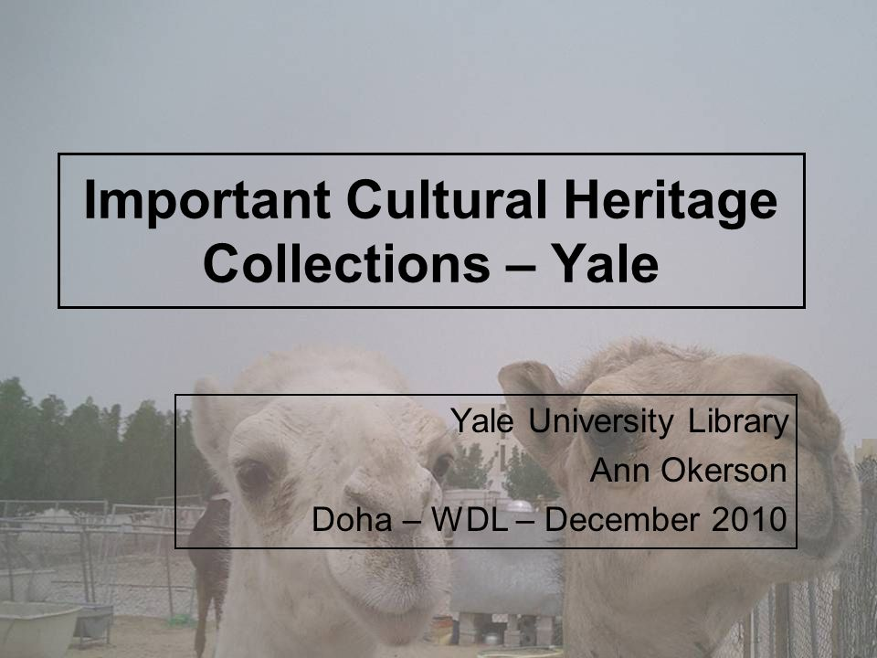 Important Cultural Heritage Collections – Yale Yale University Library Ann Okerson Doha – WDL – December 2010