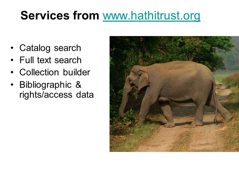 Services from www.hathitrust.orgwww.hathitrust.org Catalog search Full text search Collection builder Bibliographic & rights/access data