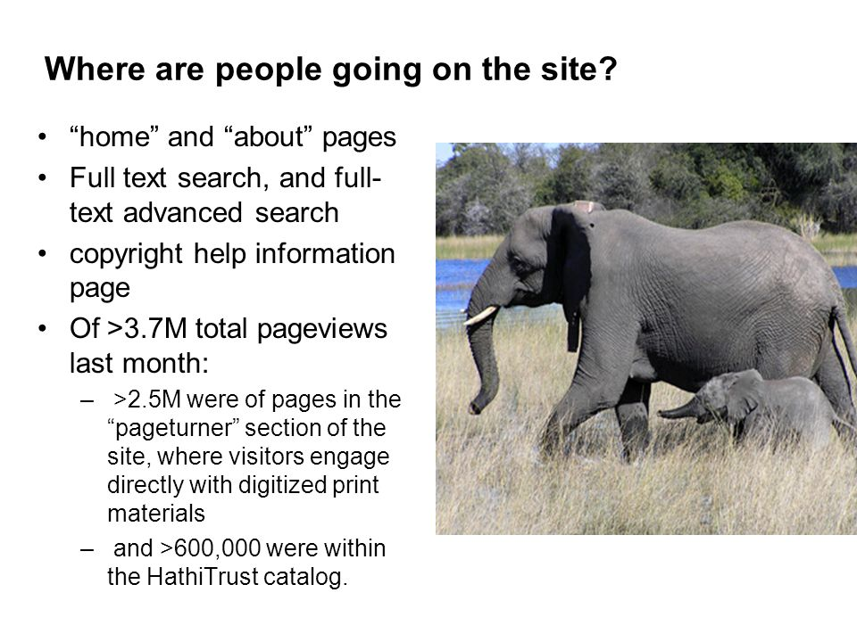 Where are people going on the site? home and about pages Full text search, and full- text advanced search copyright help information page Of >3.7M tot