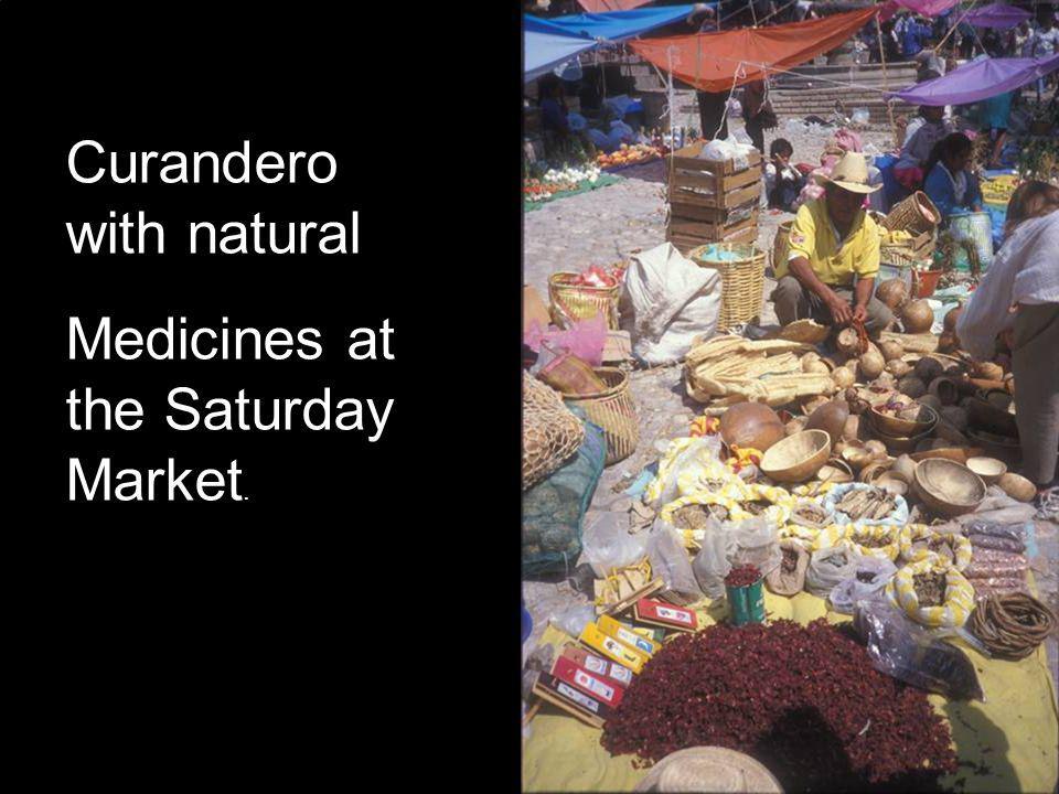 Curandero with natural Medicines at the Saturday Market.