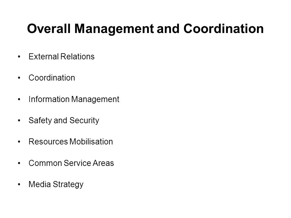 Overall Management and Coordination External Relations Coordination Information Management Safety and Security Resources Mobilisation Common Service Areas Media Strategy