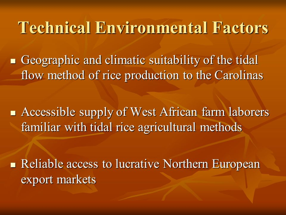 Technical Environmental Factors Geographic and climatic suitability of the tidal flow method of rice production to the Carolinas Geographic and climatic suitability of the tidal flow method of rice production to the Carolinas Accessible supply of West African farm laborers familiar with tidal rice agricultural methods Accessible supply of West African farm laborers familiar with tidal rice agricultural methods Reliable access to lucrative Northern European export markets Reliable access to lucrative Northern European export markets