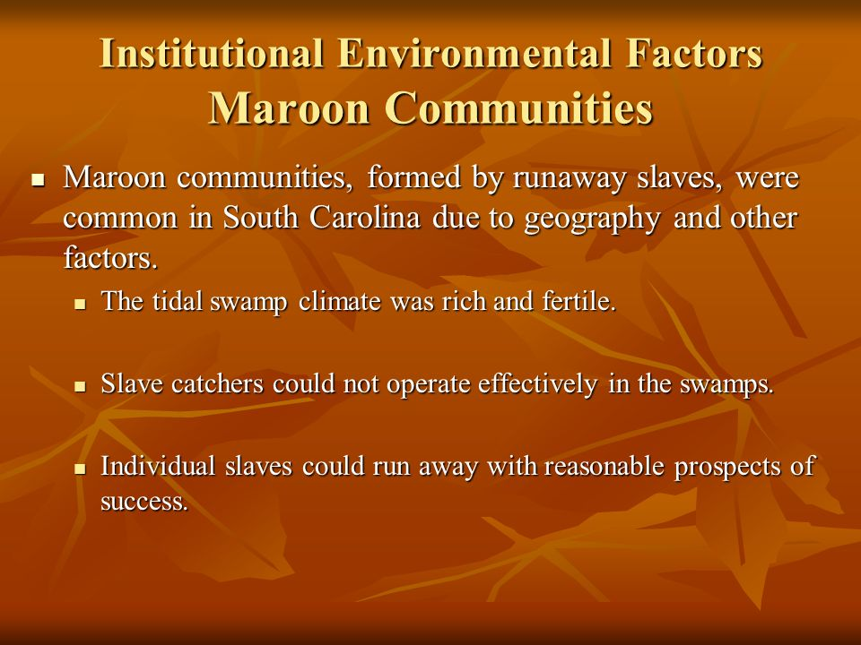 Institutional Environmental Factors Maroon Communities Maroon communities, formed by runaway slaves, were common in South Carolina due to geography and other factors.