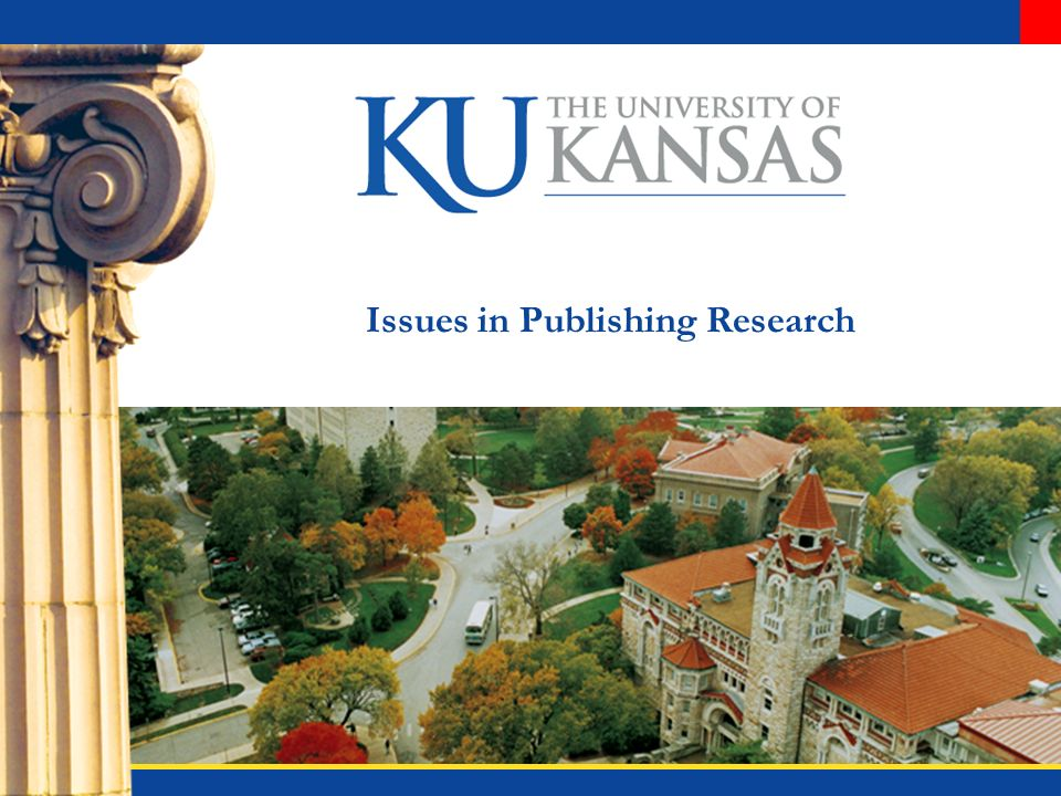 Issues in Publishing Research