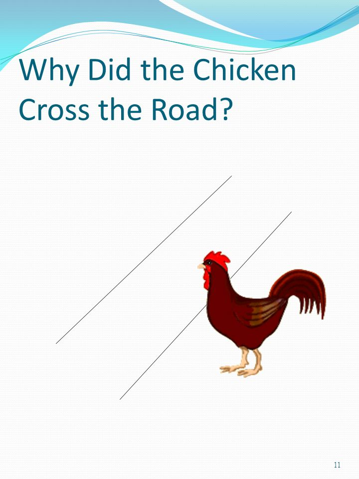 11 Why Did the Chicken Cross the Road