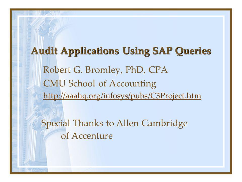 Audit Applications Using SAP Queries Robert G.