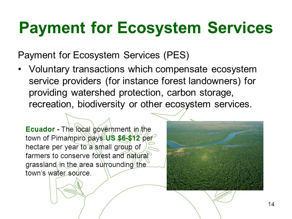 14 Payment for Ecosystem Services Payment for Ecosystem Services (PES) Voluntary transactions which compensate ecosystem service providers (for instance forest landowners) for providing watershed protection, carbon storage, recreation, biodiversity or other ecosystem services.
